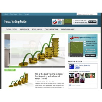 Forex Trading Niche Blog
