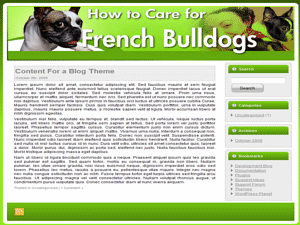 french-bulldogs.png
